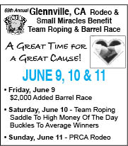 Glennville Rodeo