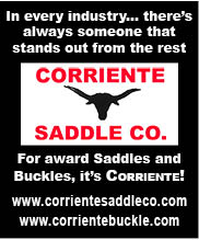 Corriente Saddles