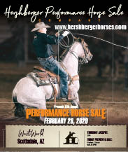 Hershberger Performance Horses