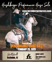 Hershberger Performance Horses