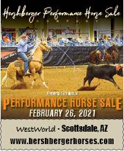 Hershberger Horse Sale