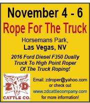 ZD Truck Roping